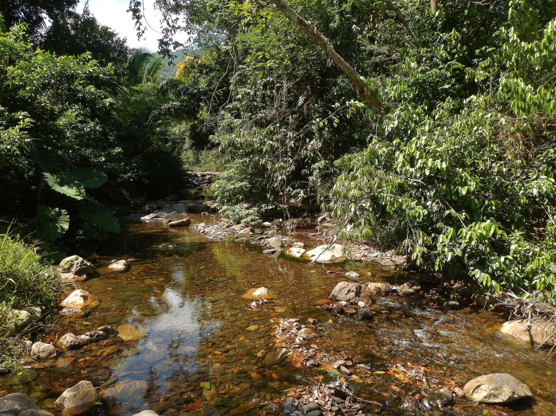 environmental habitat