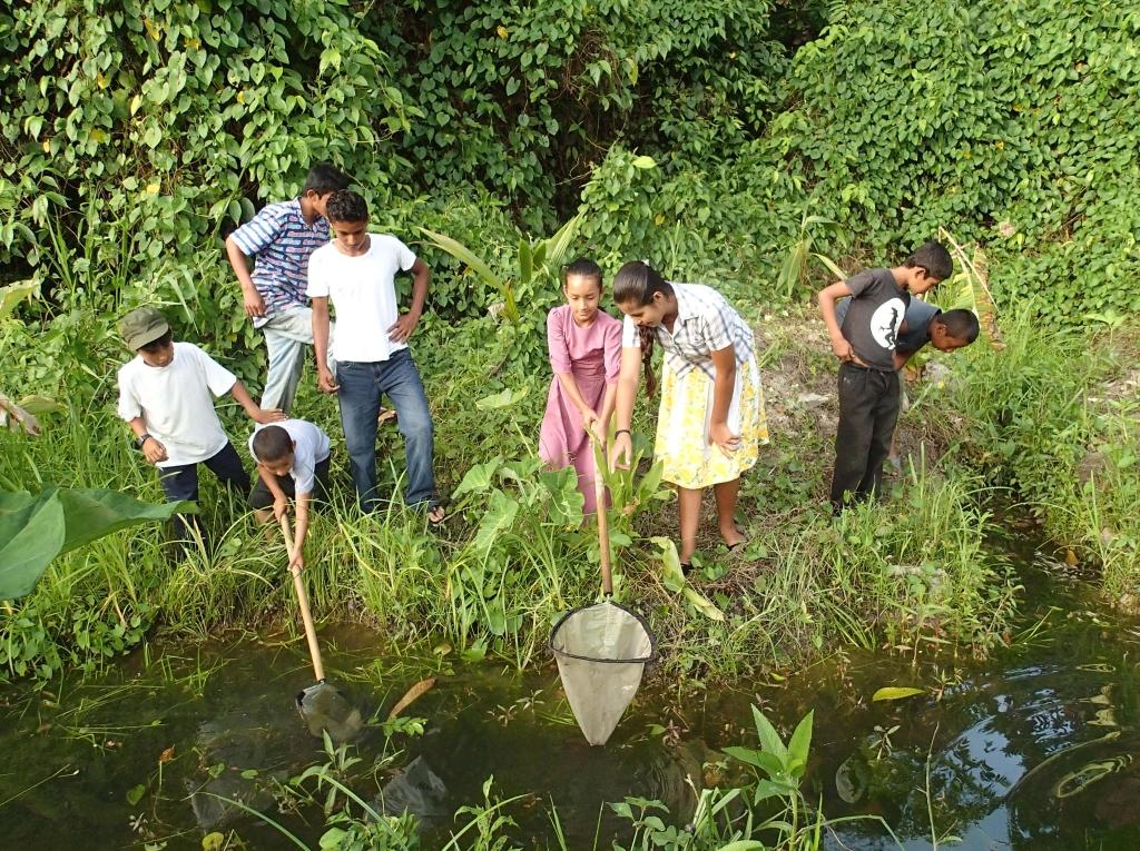 ecology internships