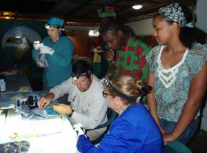ecological skill training